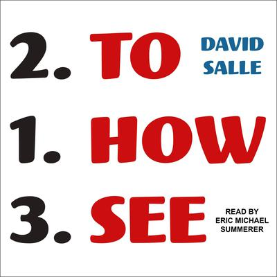 How to See: Looking, Talking, and Thinking About Art Audiobook, by David Salle
