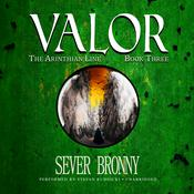 Valor Audiobook, by Sever Bronny