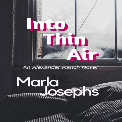 Into Thin Air Audiobook, by Marla Josephs