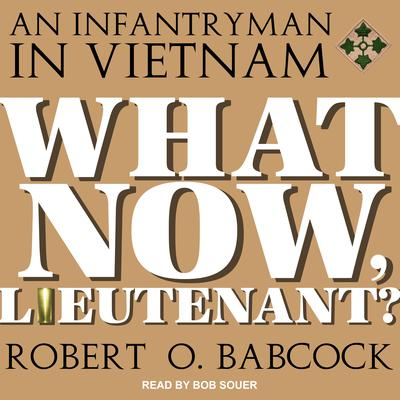 What Now, Lieutenant? Audiobook, by Robert O. Babcock