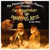 The Misadventure of the Injudicious Jurist Audiobook, by Author Info Added Soon