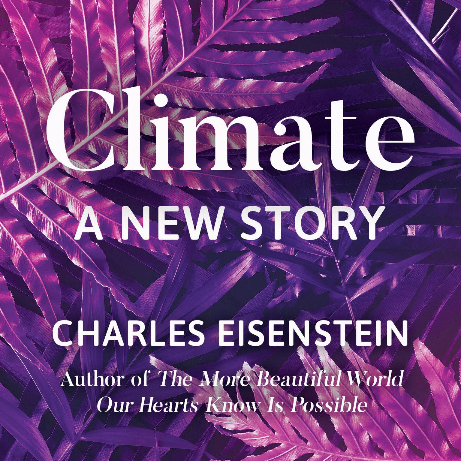 Climate--A New Story Audiobook, by Charles Eisenstein