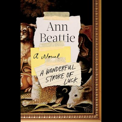 A Wonderful Stroke of Luck: A Novel Audiobook, by Ann Beattie