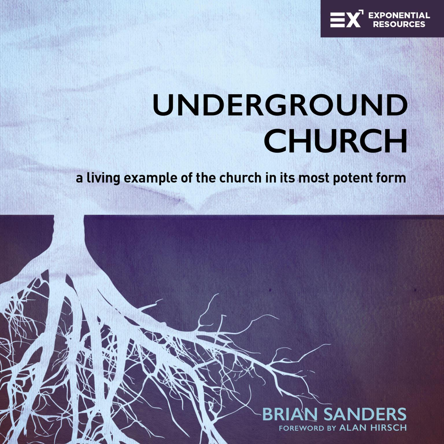 Printable Underground Church: A Living Example of the Church in Its Most Potent Form Audiobook Cover Art