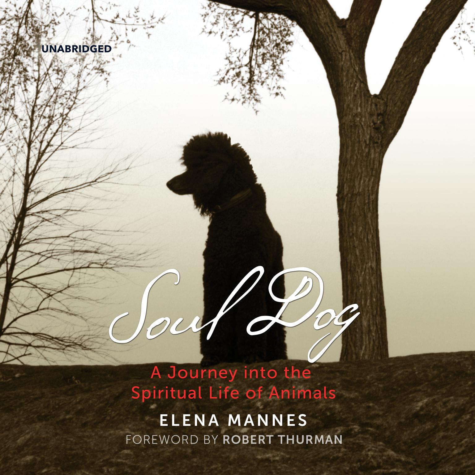 Printable Soul Dog:  A Journey into the Spiritual Life of Animals Audiobook Cover Art