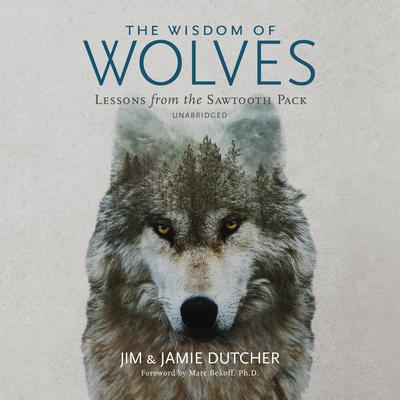 The Wisdom of Wolves: Lessons from the Sawtooth Pack Audiobook, by Jim Dutcher