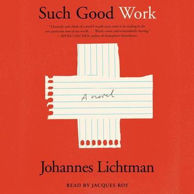 Such Good Work: A Novel Audiobook, by Johannes Lichtman