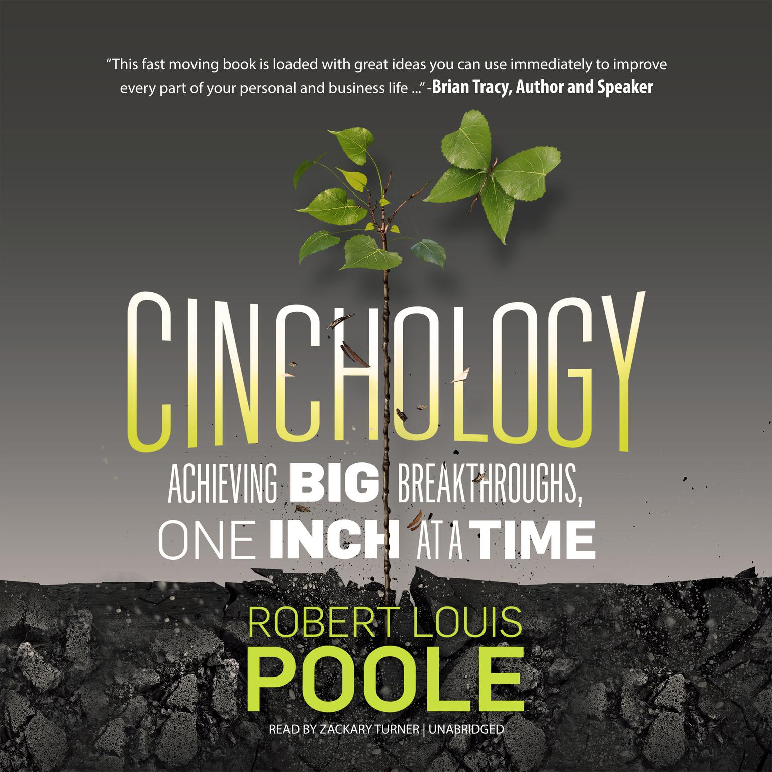 Printable Cinchology: Achieving BIG Breakthroughs, One Inch at a Time Audiobook Cover Art