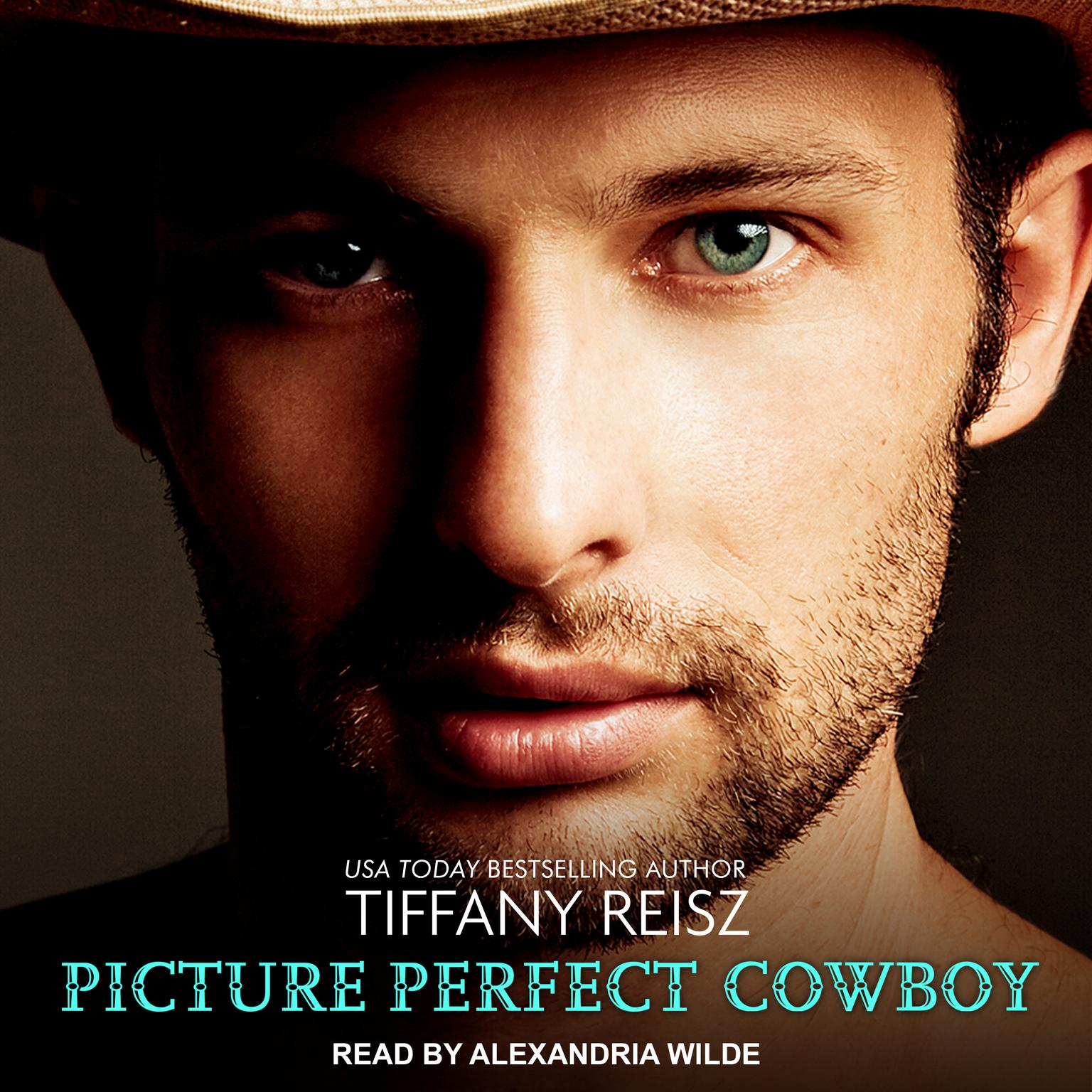 Printable Picture Perfect Cowboy Audiobook Cover Art