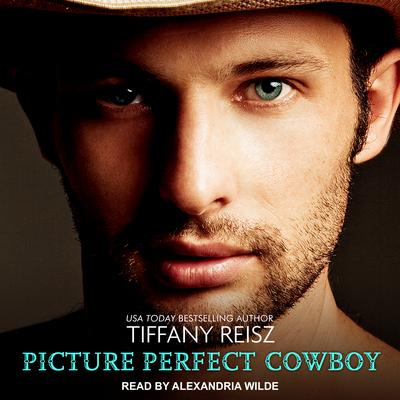 Picture Perfect Cowboy Audiobook, by Tiffany Reisz