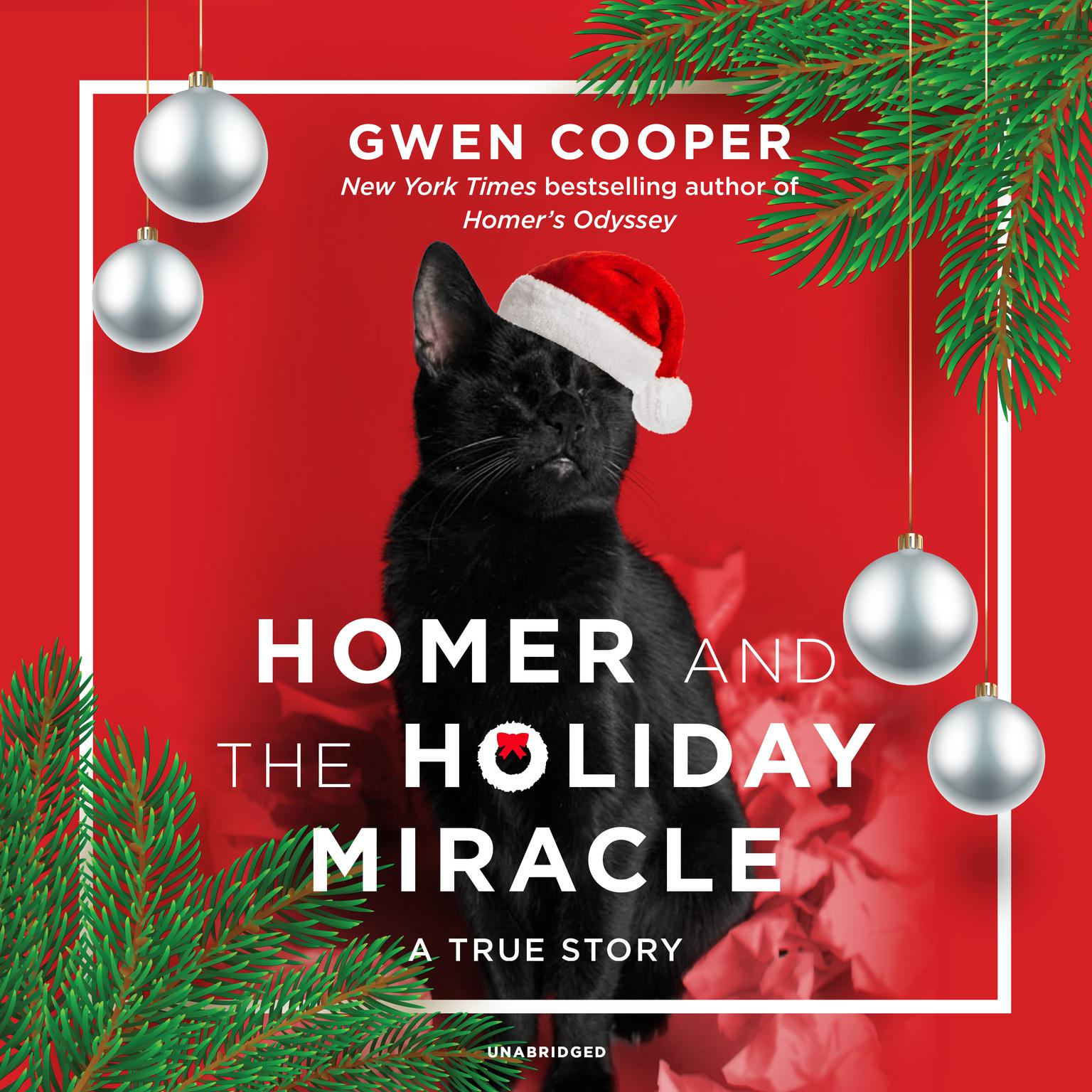 Printable Homer and the Holiday Miracle: A True Story Audiobook Cover Art