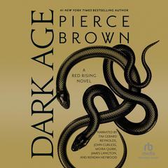 Dark Age Audiobook, by Pierce Brown
