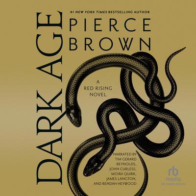 Dark Age Audiobook, by
