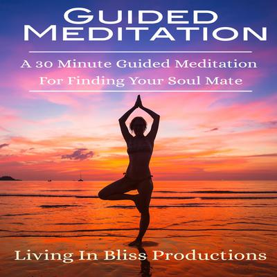 Guided Meditation: A 30 Minute Guided Mediation For Finding Your Soul Mate Audiobook, by Living In Bliss Productions