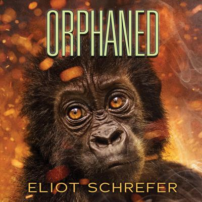 Orphaned Audiobook, by Eliot Schrefer