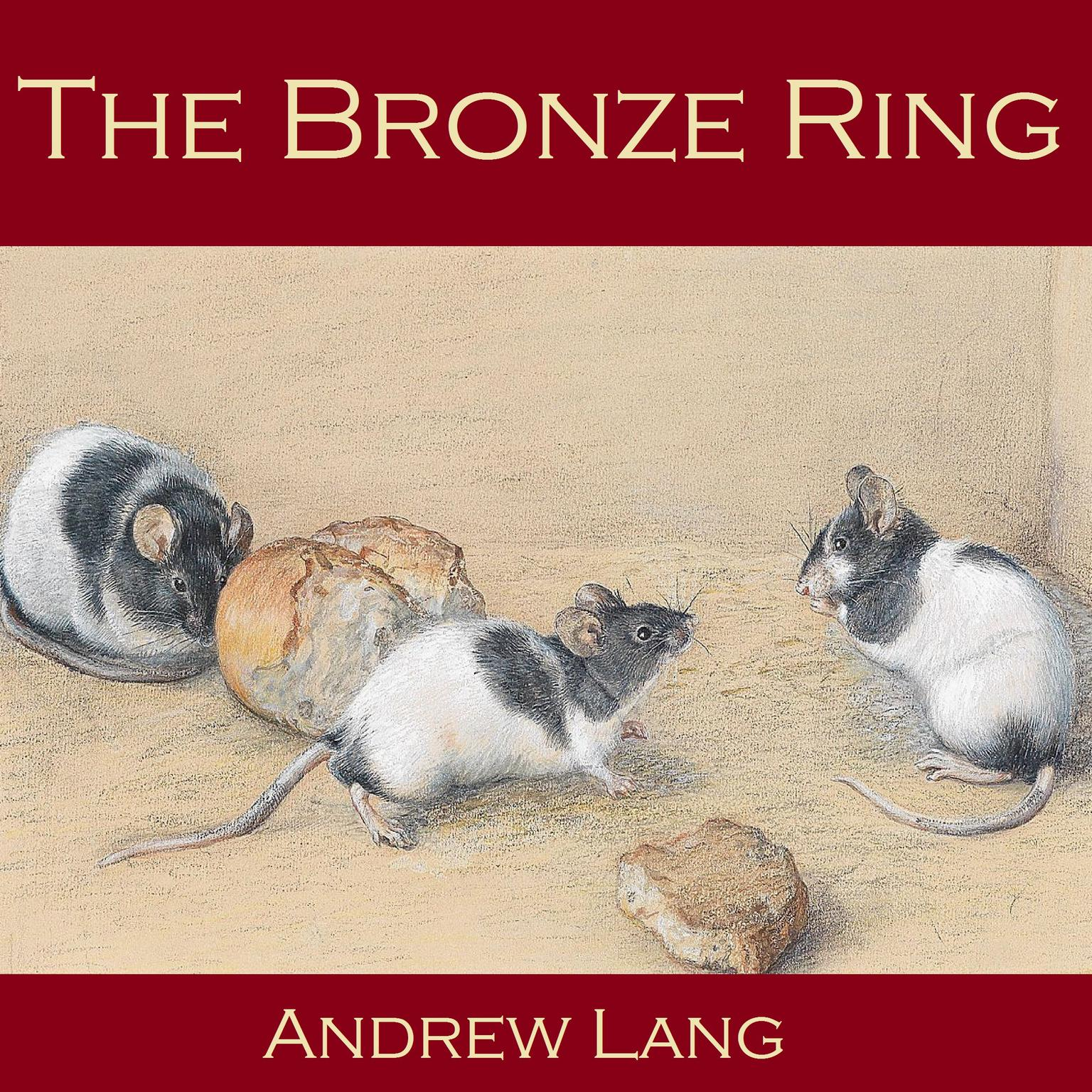 Printable The Bronze Ring Audiobook Cover Art