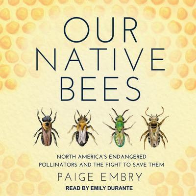 Our Native Bees: North America's Endangered Pollinators and the Fight to Save Them Audiobook, by Paige Embry