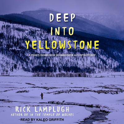 Deep into Yellowstone: A Year's Immersion in Grandeur and Controversy Audiobook, by Rick Lamplugh
