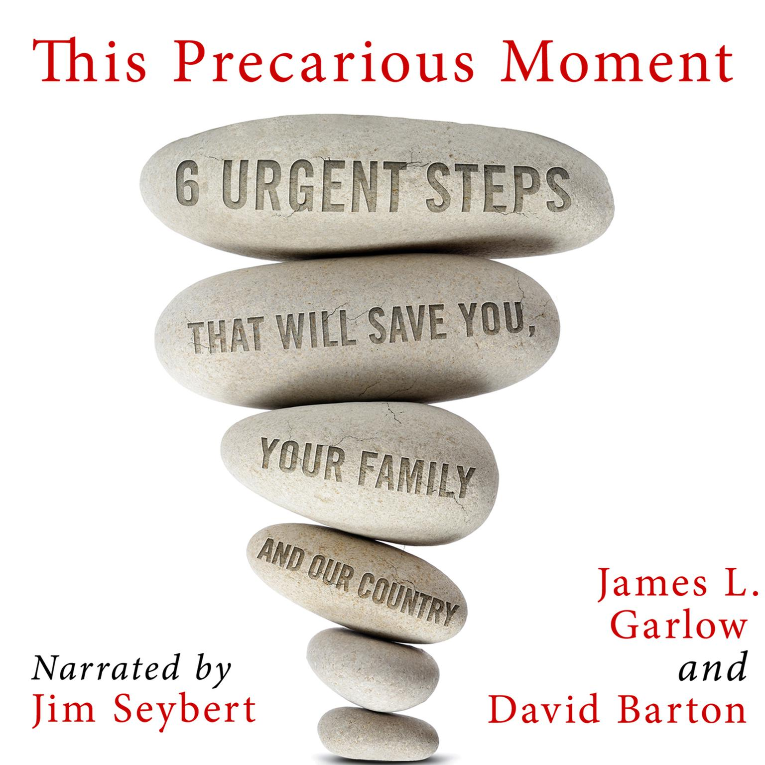 Printable This Precarious Moment: Six Urgent Steps that Will Save You, Your Family, and Our Country Audiobook Cover Art