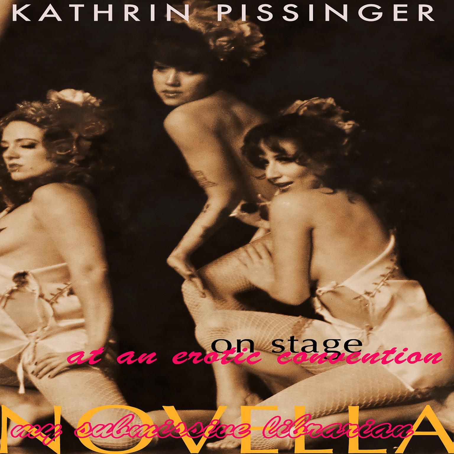 On Stage At An Erotic Convention Audiobook, by Kathrin Pissinger