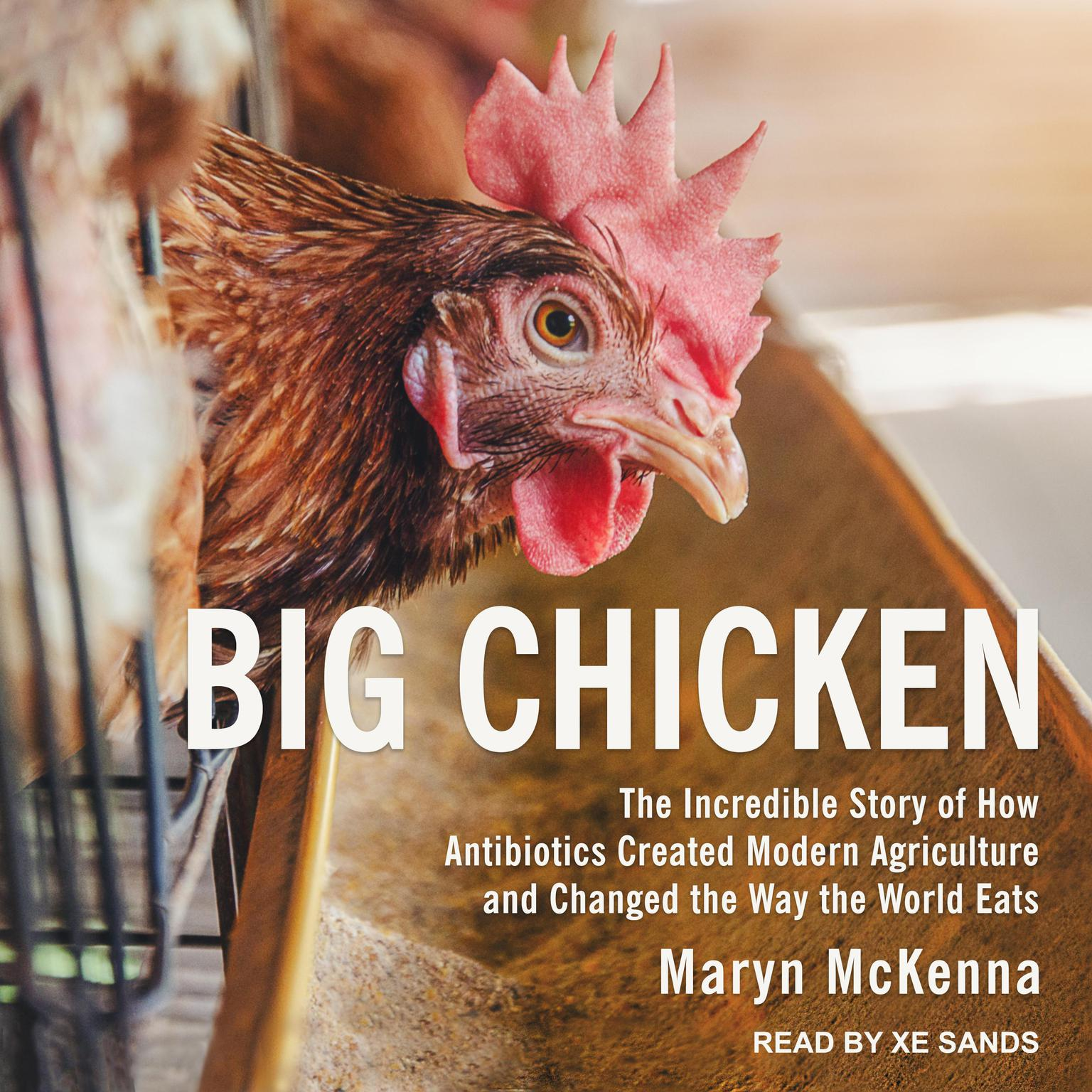 Printable Big Chicken: The Incredible Story of How Antibiotics Created Modern Agriculture and Changed the Way the World Eats Audiobook Cover Art