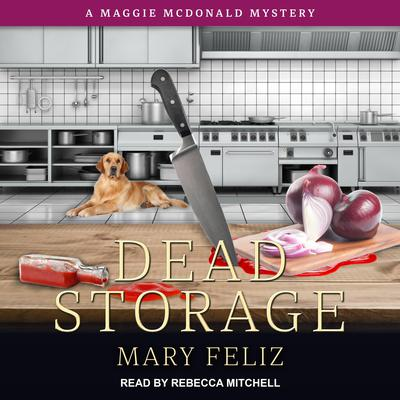 Dead Storage Audiobook, by Mary Feliz