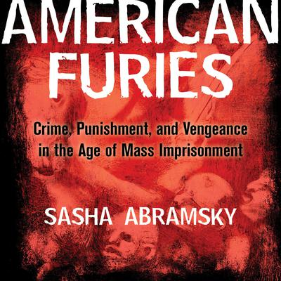 American Furies: Crime, Punishment, and Vengeance in the Age of Mass Imprisonment Audiobook, by Sasha Abramsky