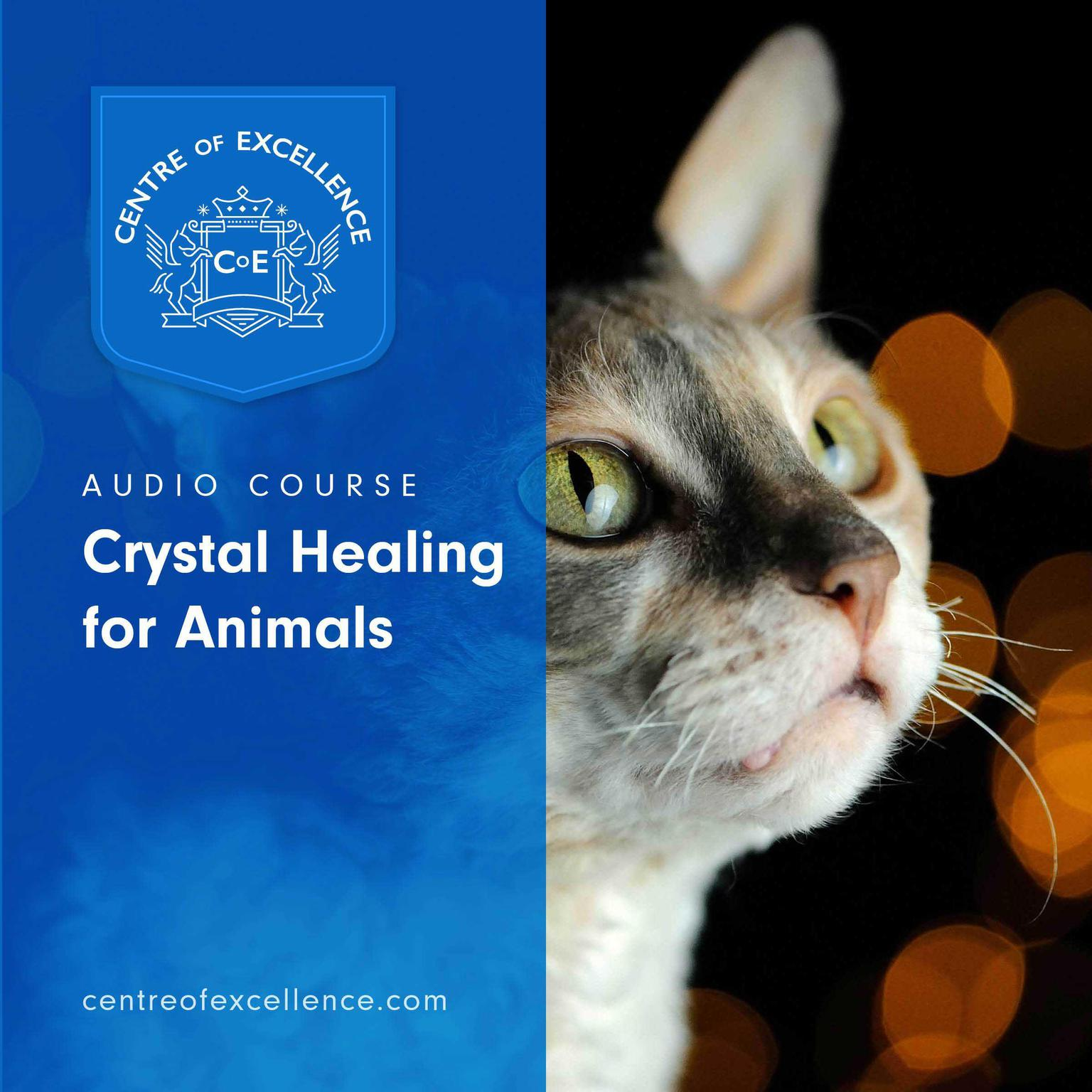 Printable Crystal Healing for Animals Audiobook Cover Art