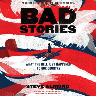 Bad Stories: What the Hell Just Happened to Our Country Audiobook, by Steve Almond