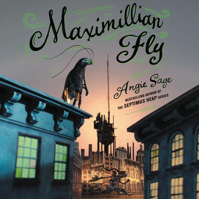 Maximillian Fly Audiobook, by Angie Sage