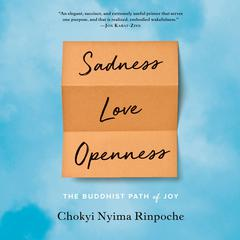 Sadness, Love, Openness: The Buddhist Path of Joy Audiobook, by Chokyi Nyima Rinpoche