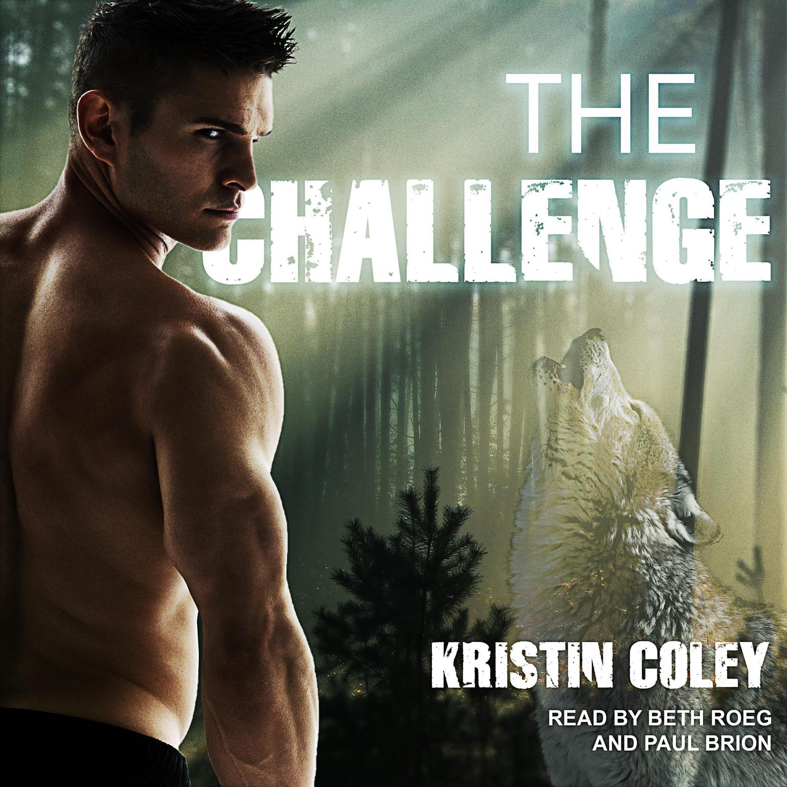 Printable The Challenge Audiobook Cover Art