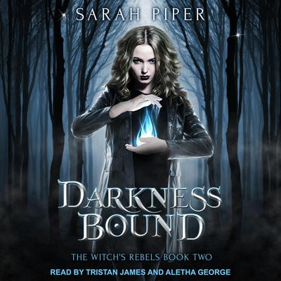 Darkness Bound: A Reverse Harem Paranormal Romance Audiobook, by Sarah Piper