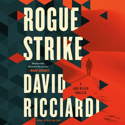 Rogue Strike Audiobook, by David Ricciardi