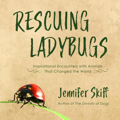 Rescuing Ladybugs: Inspirational Encounters with Animals That Changed the World Audiobook, by Jennifer Skiff