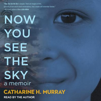 Now You See the Sky Audiobook, by Catharine H. Murray