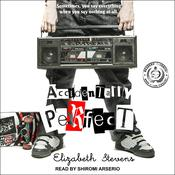 Accidentally Perfect Audiobook, by Elizabeth Stevens