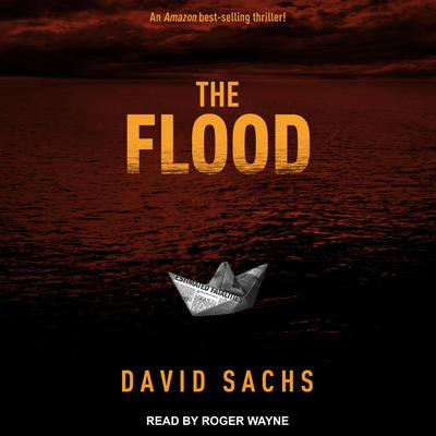 The Flood Audiobook, by David Sachs