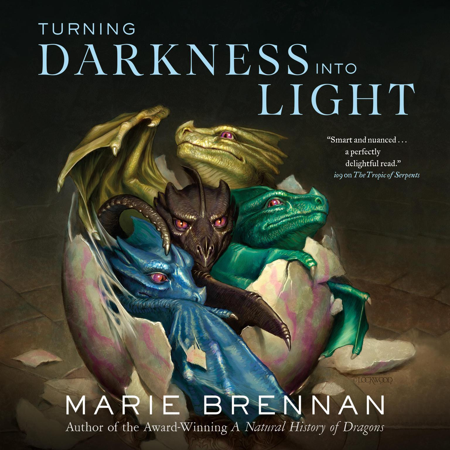 Printable Turning Darkness Into Light Audiobook Cover Art