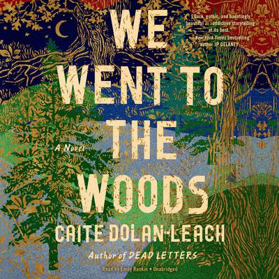 We Went to the Woods: A Novel Audiobook, by Caite Dolan-Leach