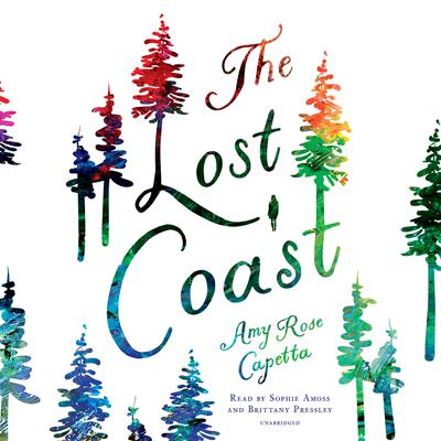 The Lost Coast Audiobook, by Amy Rose Capetta
