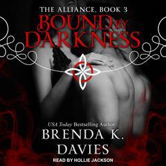 Bound By Darkness Audiobook, by Brenda K. Davies
