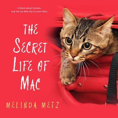The Secret Life of Mac Audiobook, by Melinda Metz