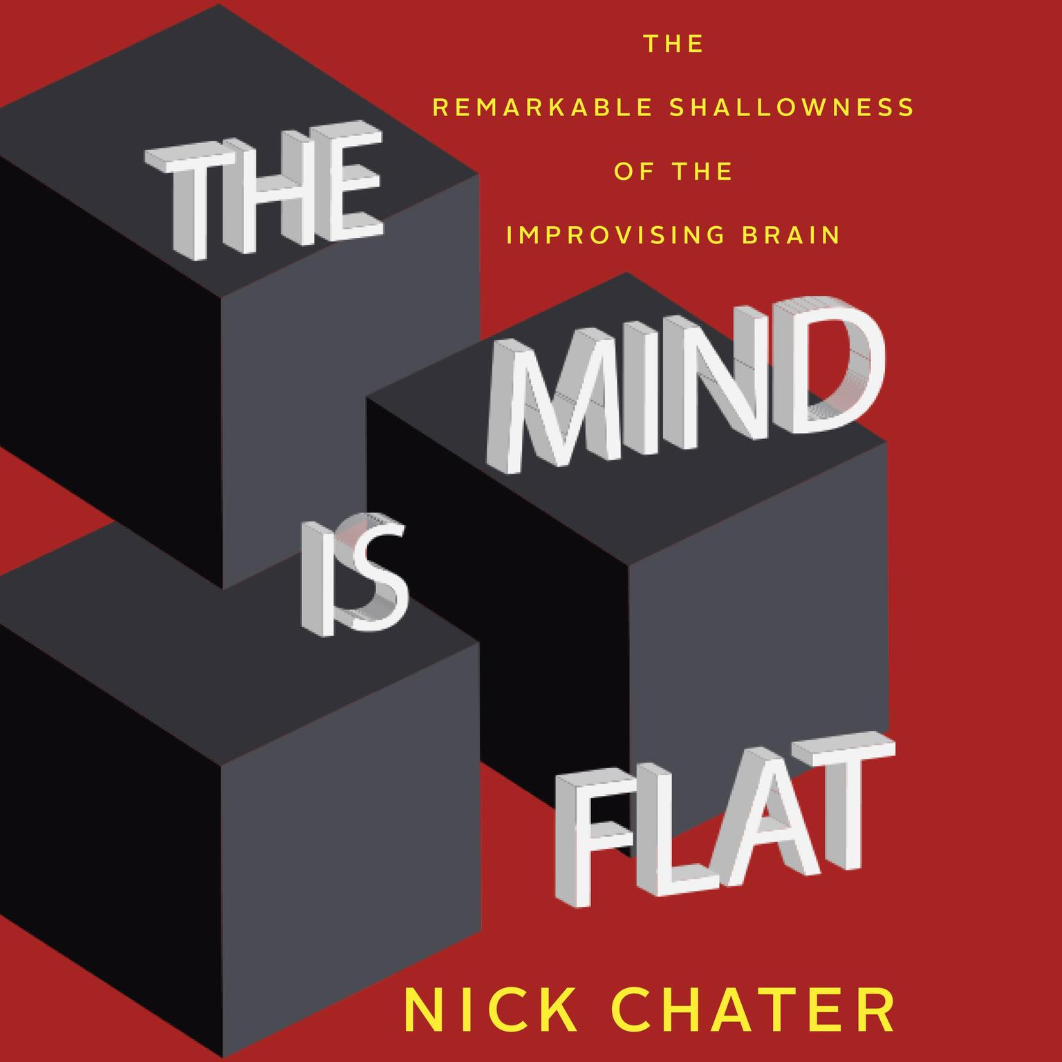 Printable The Mind Is Flat: The Remarkable Shallowness of the Improvising Brain Audiobook Cover Art