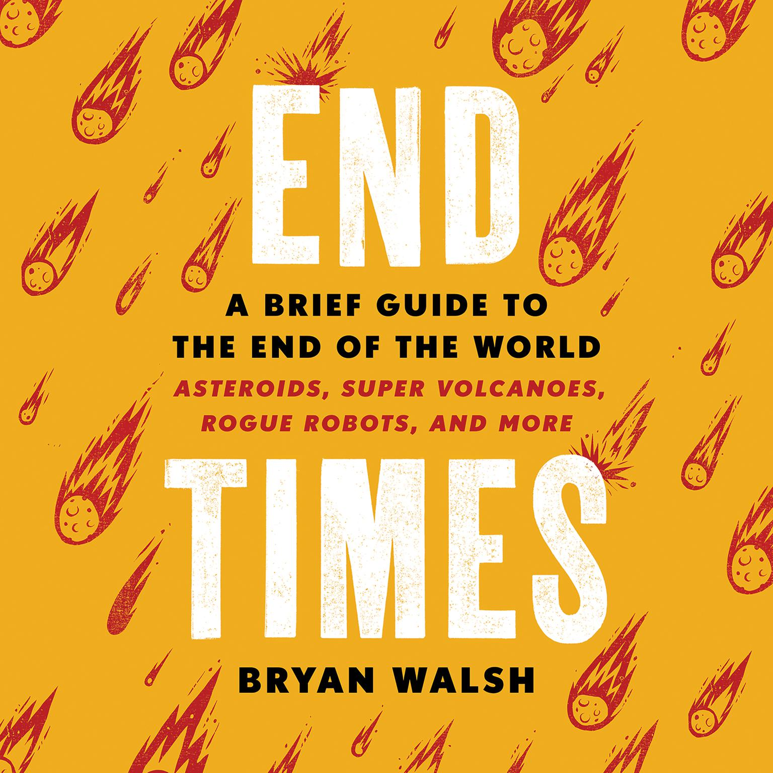 End Times: A Brief Guide to the End of the World Audiobook, by Bryan Walsh