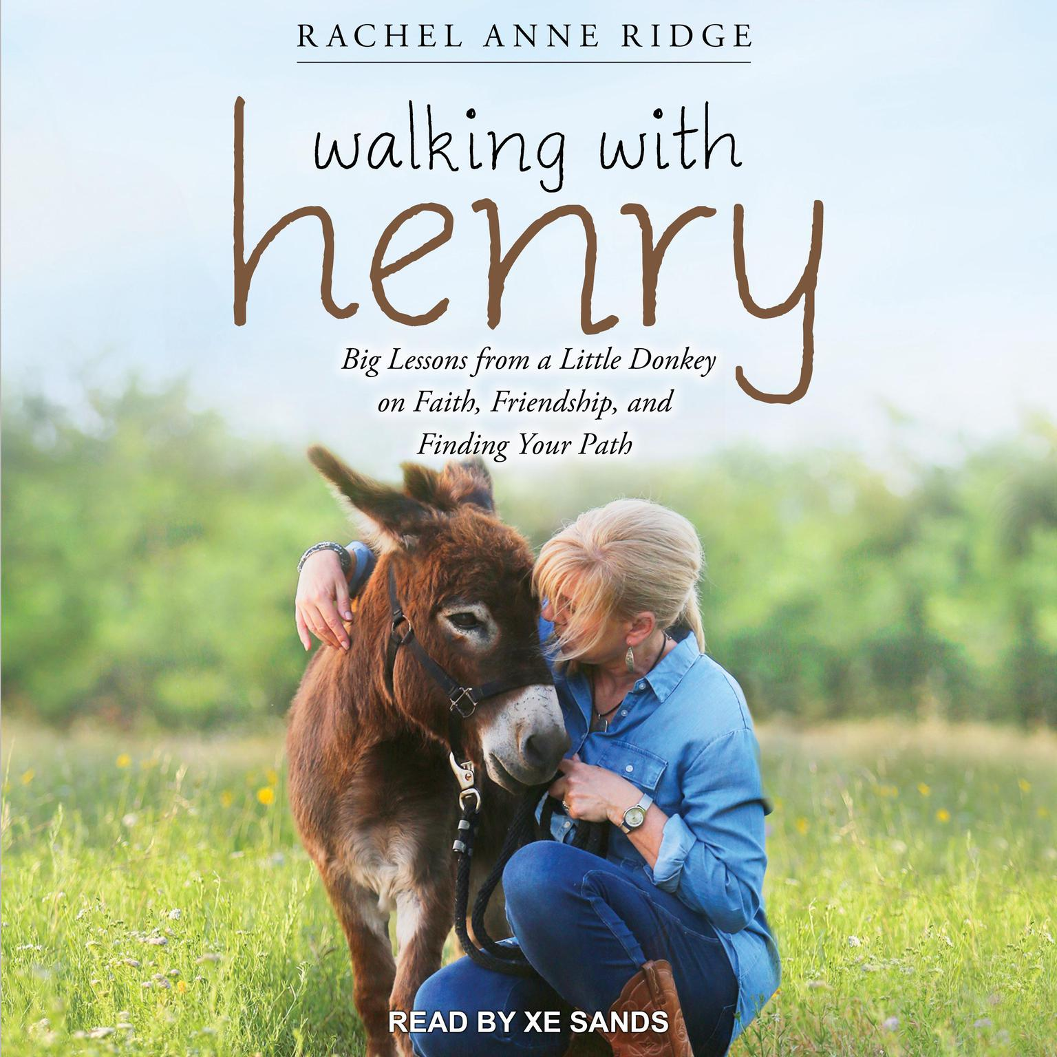 Printable Walking with Henry: Big Lessons from a Little Donkey on Faith, Friendship, and Finding Your Path Audiobook Cover Art