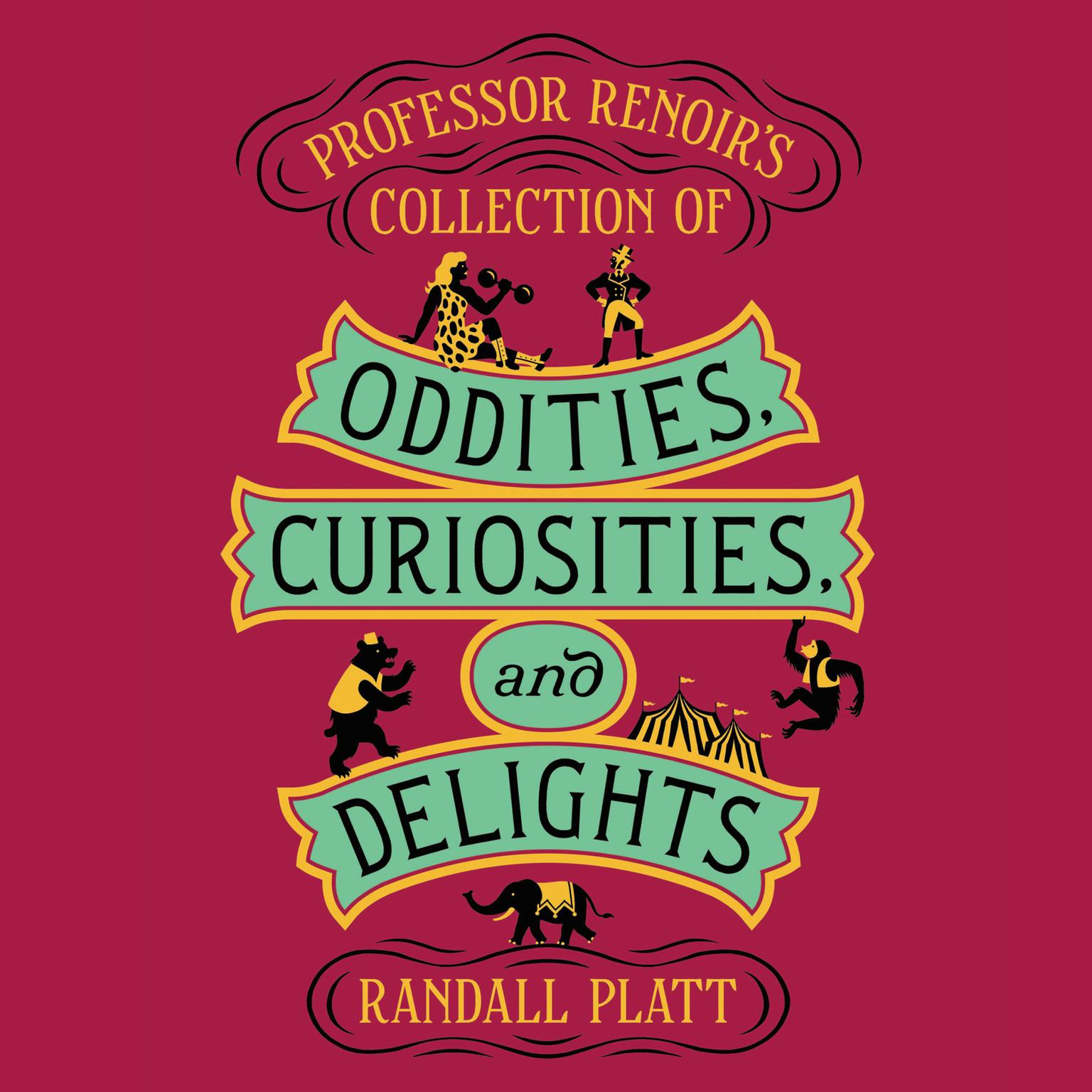 Printable Professor Renoir's Collection of Oddities, Curiosities, and Delights Audiobook Cover Art