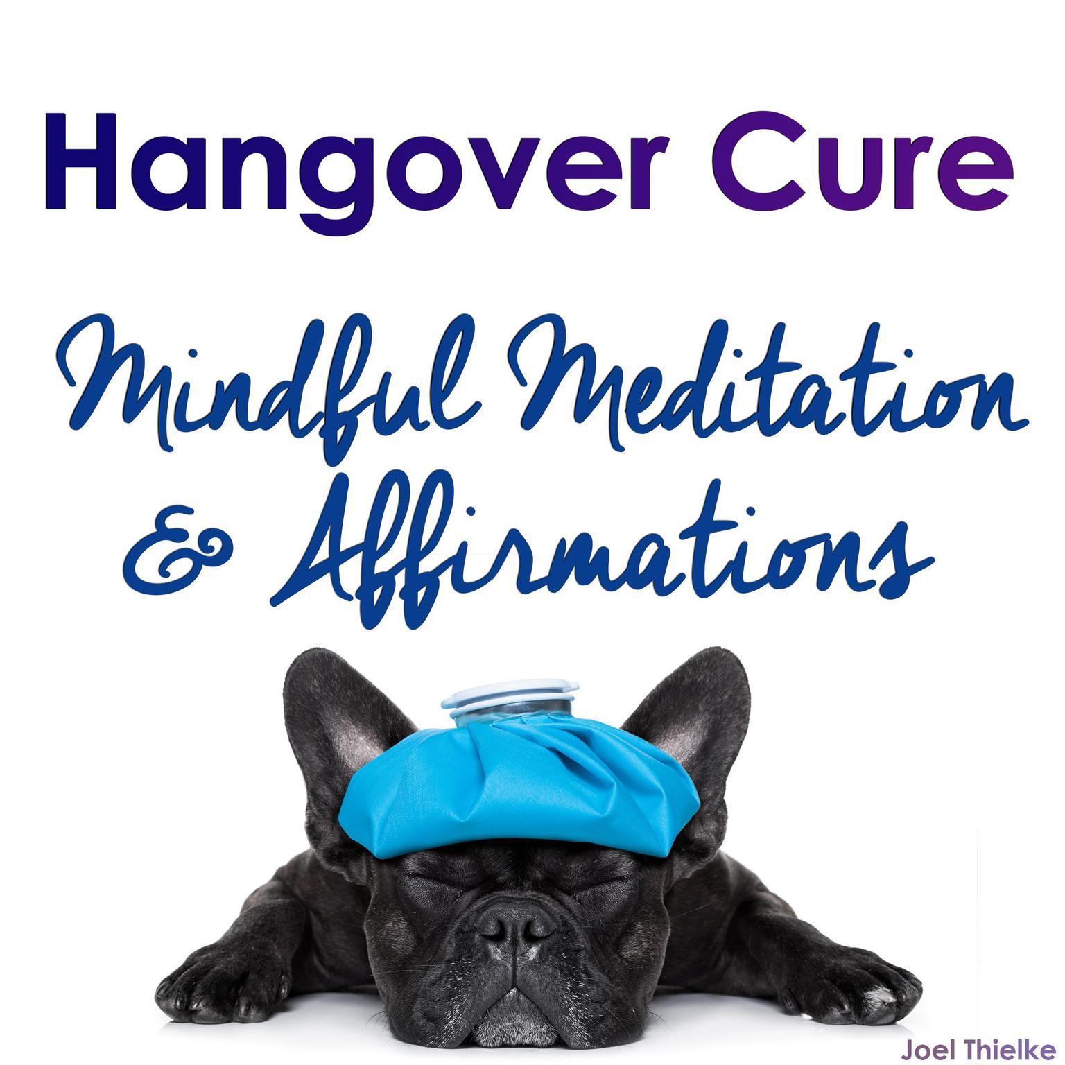 Hangover Cure - Mindful Meditation & Affirmations Audiobook, by Joel Thielke