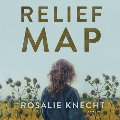 Relief Map Audiobook, by Rosalie Knecht