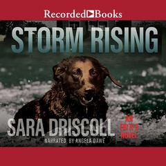 Storm Rising Audiobook, by Sara Driscoll